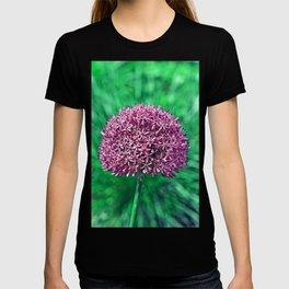 ALIUM T-shirt