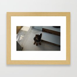 Ferocious Kaiser. Framed Art Print