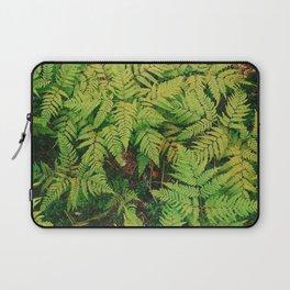 Fern Landscape Laptop Sleeve