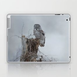 Gloomy Sunday Laptop & iPad Skin