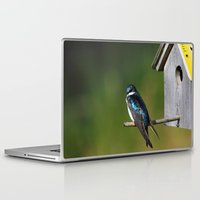 swallow Laptop & iPad Skins featuring Barn Swallow by Debbie Maike Photography