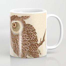 Owl Sitting on Branch Coffee Mug