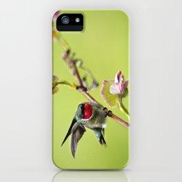 Hummingbird I iPhone Case