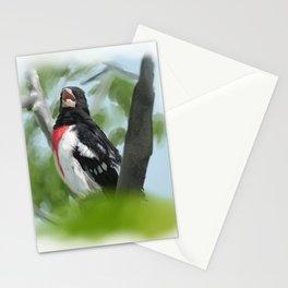 Grosbeak Stationery Cards