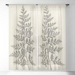 Naturalist Fern Sheer Curtain