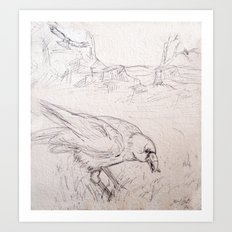 Crow Sketch #1 Art Print