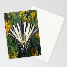Scarce Swallowtail, Iphiclides Podalirius Stationery Cards