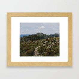 Summer in the White Mountains Framed Art Print