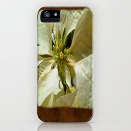 Pale Yellow Poinsettia 1 Blank P3F0 iPhone Case