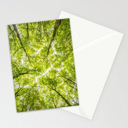 Tree Forest Sky Stationery Cards