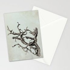 Spirits of the Driftwood Stationery Cards