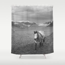 Western Photograph   Rustic Horse and Mountains Shower Curtain
