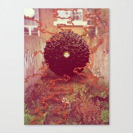 Coexist my Friends. Canvas Print