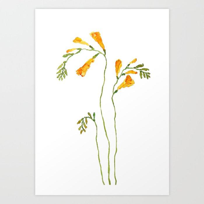 orange freesia watercolor Art Print