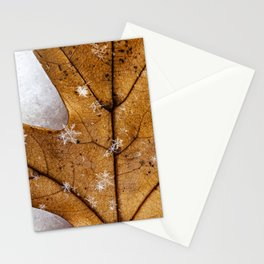 snowflakes on a leaf Stationery Cards
