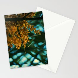 The Amazon. Stationery Cards