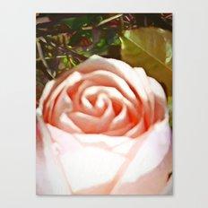 A Pale Pink Rosebud Canvas Print