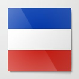 Flag of schleswig-Holstein Metal Print