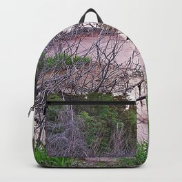 Mountain Swamp Backpack