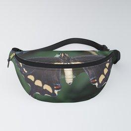 Butterfly wings open Fanny Pack
