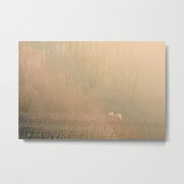 Ride in the mist Metal Print