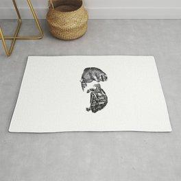 Racoon Turtle Rug