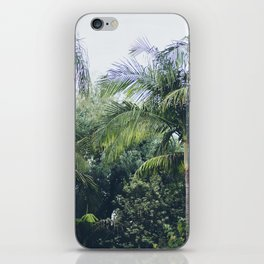 Palm Trees in a Tropical Garden iPhone Skin