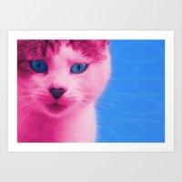 Mango the rose cat  Art Print