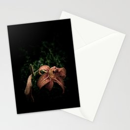 Wilted Lily  Stationery Cards