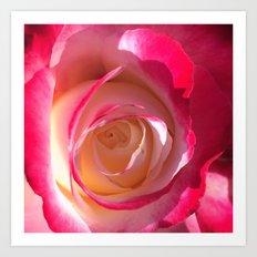 Eye Of The Rose Art Print