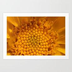 Flower's Heart 153 Art Print
