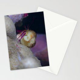 Seductive crab Stationery Cards