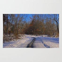 Frosty Footpath Rug