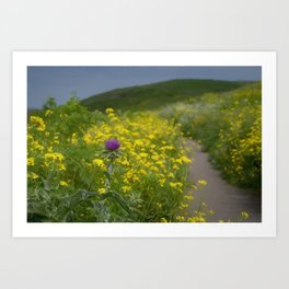 Springtime flowers hike toward the sea Art Print