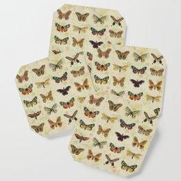 Moths & Butterflies Coaster