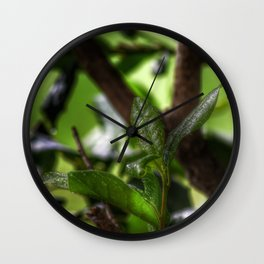 Fresh from The Garden Wall Clock