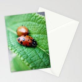 snuggle Stationery Cards