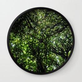 umbrella of trees Wall Clock