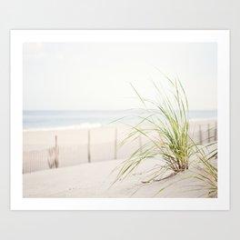 Beach Grass Coastal Photography, Seashore Jersey Shore Photograph Art Print