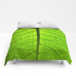 New Leaf Comforters