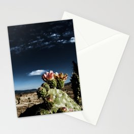 MS Nopalera Sky IIAB 2. S6 Stationery Cards