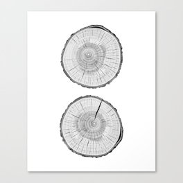 Double tree rings Canvas Print