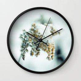 Frost & beauty Wall Clock