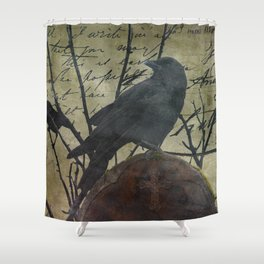 The Raven Speaks - Crow on Stone A675 Shower Curtain