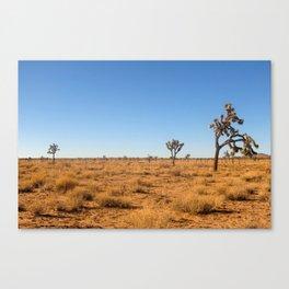 Joshua Tree Landscape 001 Canvas Print