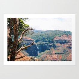Canyon Waterfall 2 Art Print