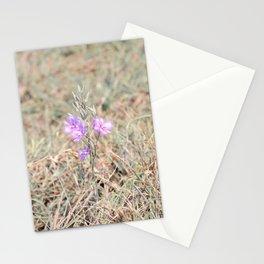 #13.... Stationery Cards