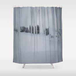February: 2 Shower Curtain
