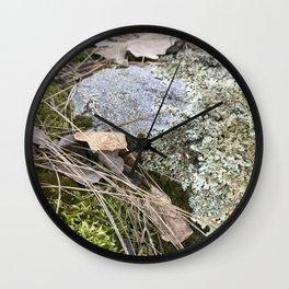 mossy prairie rock Wall Clock
