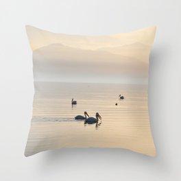 MYSTERIOUS SALTON SEA Throw Pillow